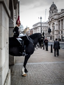 All The King's Horses London-8176